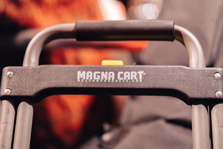 Magna cart 1